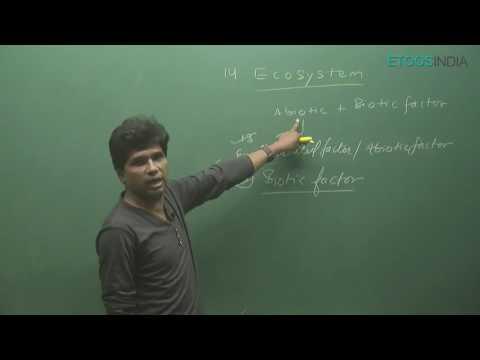 NEET I Biology I Ecosystem I Mohd. Asad Qureshi  (MAQ) Sir from ETOOSINDIA.COM thumbnail