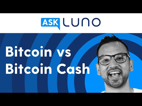 What Is The Difference Between Bitcoin And Bitcoin Cash? | Ask Luno