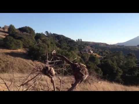Sleepy Hollow Marin county Ca
