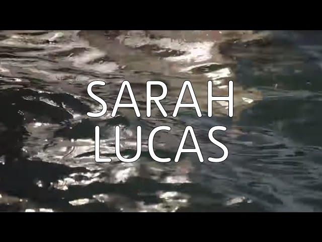 Sarah Lucas   TateShots