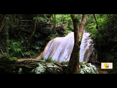 Molina Waterfalls - Inside Verona - ENG