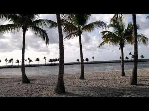 View of Matheson Hammock Park in Miami for Weddings