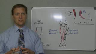 Shin Splints - Cause and Treatment