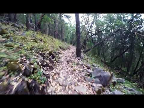 Downhill MTB Prescott park, Rock N Roll trail(Upper Lava Flow), Scott genius, Hero4 silver 8 5 17