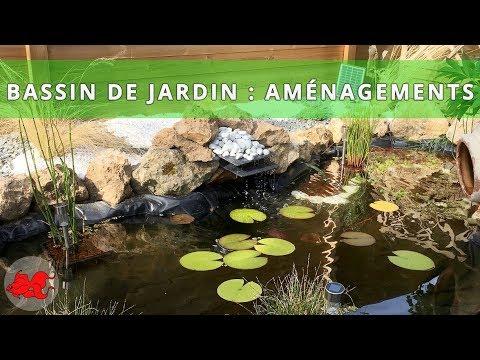 Bassin de jardin  Bordure et amnagements  YouTube