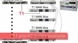 Monitor via T1 or E1: VLAN Router and WAN Mux...