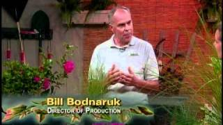 The Basics of Horticulture part 1