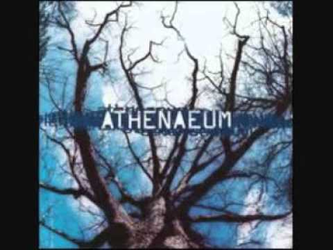 Athenaeum  Comfort full track