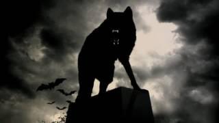 Wolf's Frend (песня смерть друга)