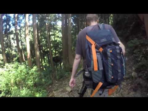 hiking in nara