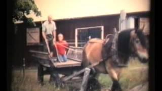 Bondelivet i Gåsevål 1982 del 2 höskörd