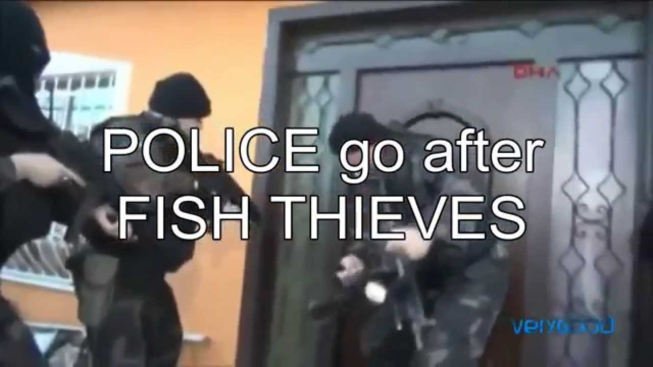 Police go after Fish THIEVES