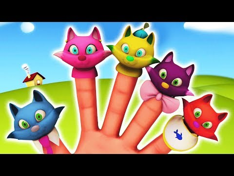 Cat Finger Family Rhymes | Color Animals Videos | Nursery Rhymes Collection and Kids Songs