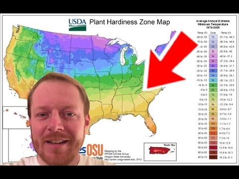 What Is My Plant Hardiness Zone?