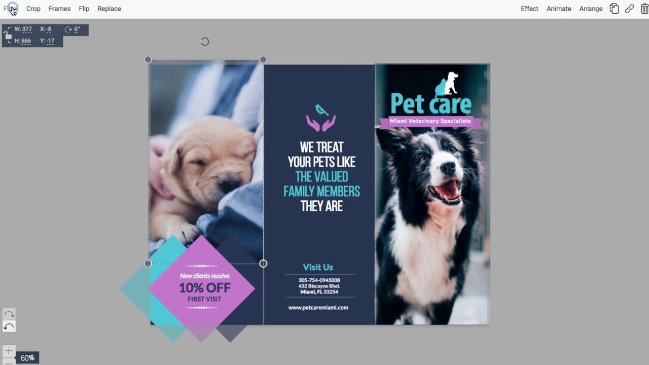 Free Brochure Maker | Brochure Creator | Visme