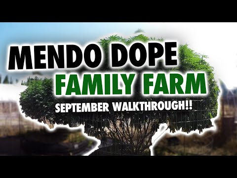 MendoDope Family Farm 9.1.17