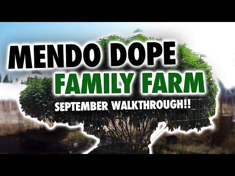 MendoDope Family Farm 9.1.17