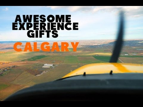 Unique Experience Gift . Introductory Flying Lesson - Calgary ...
