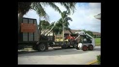 Tree Service Boca Raton FL   561-733-3536   Boca Raton Tree Trimming - Tree Service