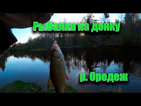 Рыбалка на донку. река Оредеж.