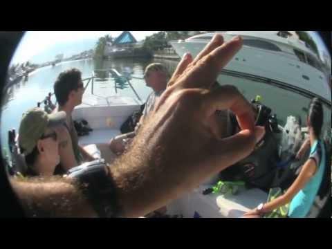 Marietas Dive (Day 1)