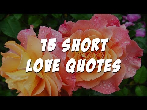 Short love quotes to your boyfriend