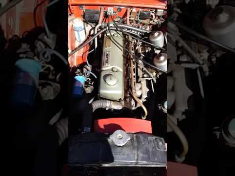1965 austin motor cold start.