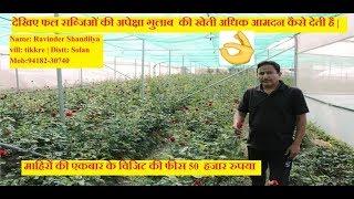 देखिए फल सब्जिओं की अपेक्षा गुलाब  की खेती अधिक आमदन कैसे देती है | #RoseFarming
