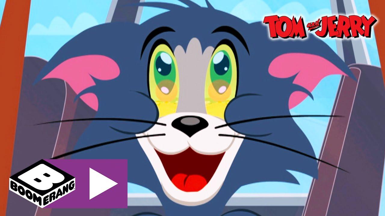 Tom & Jerry | Road Trip | Boomerang UK