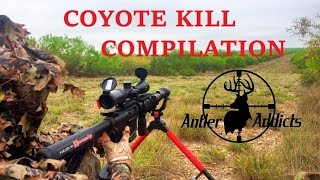 Coyote Hunting Kill Compilation - Dirt Naps