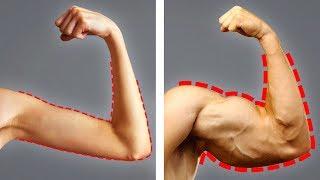 19 продуктов для быстрого набора веса и мышечной массы