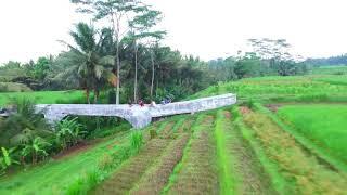 Video Bridge and rice field always download MP3, 3GP, MP4, WEBM, AVI, FLV Juli 2018