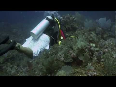 Hunting Lionfish In Belize (720p)