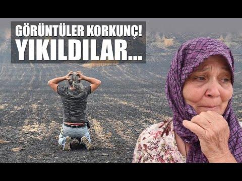 """Gelibolu'da tarlaları yanan köylüler büyük üzüntü yaşadı; """"Bunun gibisini görmedik""""."""