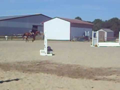 Catie And Elliot's Jumping Course At C-line Stables
