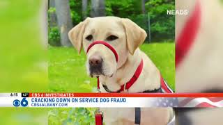 CBS6 investigates service dog fraud