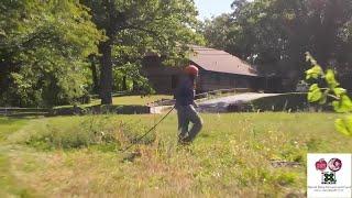 Urban farming: Detroit based nonprofit works to make sure Black farmers own their land