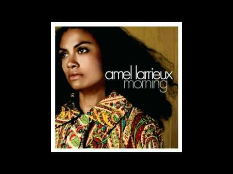 Amel Larrieux-Trouble