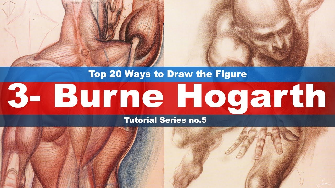 Top 20 Ways to Draw the Figure (3-Burne Hogarth) Tutorial series No ...