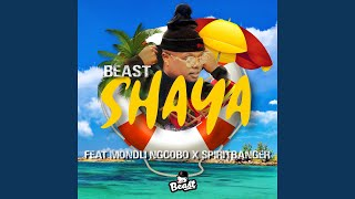 Shaya feat Mondli Ngcobo Spiritbanger