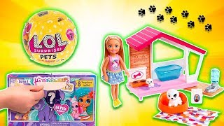 Chelsea's Pet Care with LOL Surprise Pet and Hairdorables Pet!