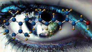 Retinol or Vitamin A: 3D Molecule