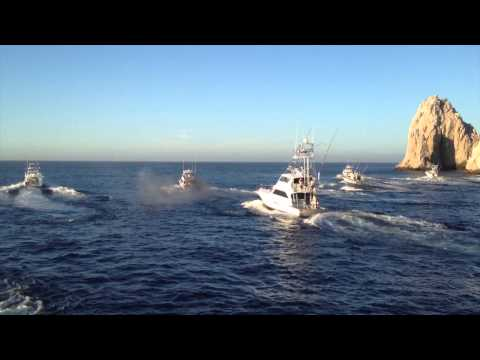 2013 Bisbee's Black & Blue Fishing Tournament In Cabo