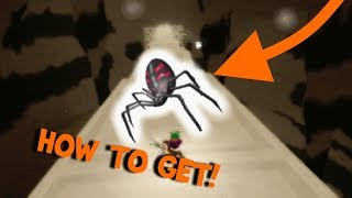 HOW TO GET THE SPIDER EGG!! | Roblox Egg Hunt 2018