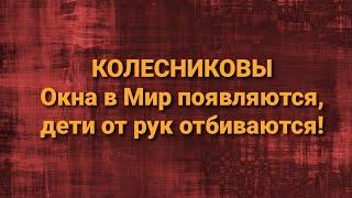 Семья Колесниковых/Новости из Дворца.
