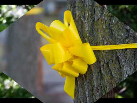 RAY CONNIFF & HIS ORCHESTRA   TIE A YELLOW RIBBON ON AN OLE OAK TREE