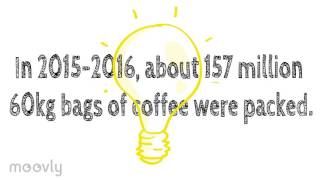 Where Does Your Coffee Come From?