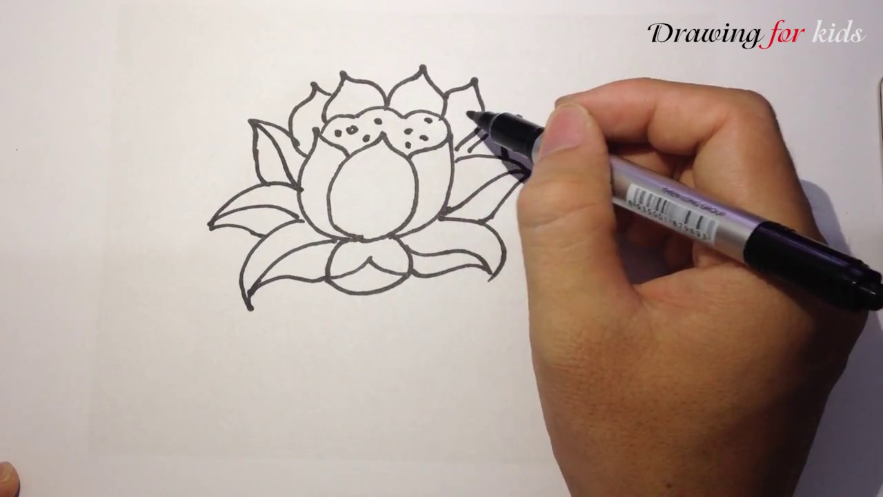 How To Draw Lotus Flower Step By Step Lotus Drawing Idea Youtube