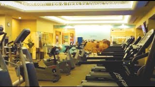 Luxor Resort Vegas Fitness Center.  Walkthrough Of The Luxor Gym.