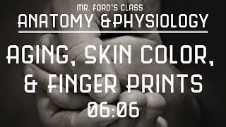 Mr. Fords Anatomy Physiology: 06:06 Aging, Skin Color, & Finger Prints